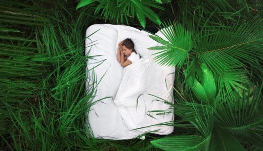 安眠のためのCBDグミ|アメリカの事情で現れては消えるCBDグミ  今買えるのは?