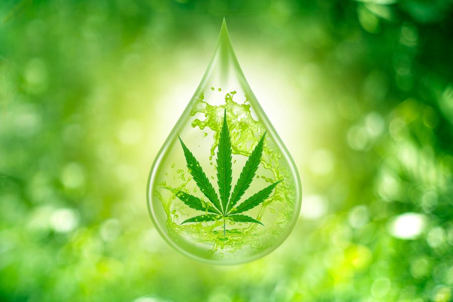 グリーンの滴の中に浮かぶ木の葉のイラスト