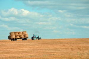 青いトレーラーが写る美しい農園の写真