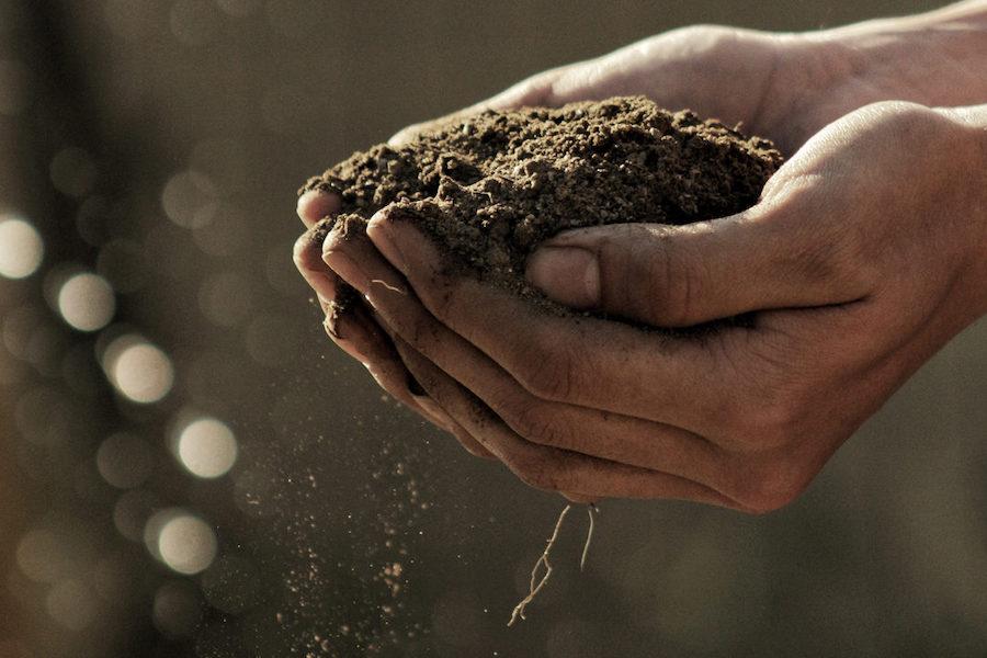 両手一杯の土を持った写真